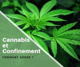 Cannabis et confinement